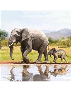 MUM & LITTLE ELEPHANT