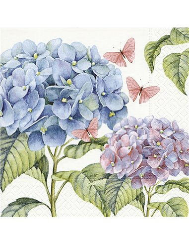 HORTENSIAS SUAVES