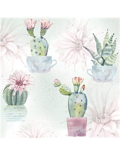 FLOWERING CACTUSES