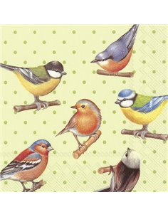 BIRDS AND DOTS