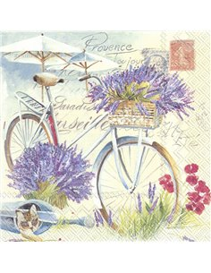 PROVENCE TOUJOUR