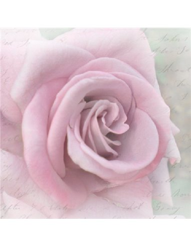 CLEAR ROSE