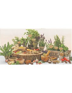 FLOWER POT HERBS